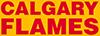 Calgary Flames Wordmark