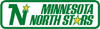 Minnesota North Stars 1991 Wordmark